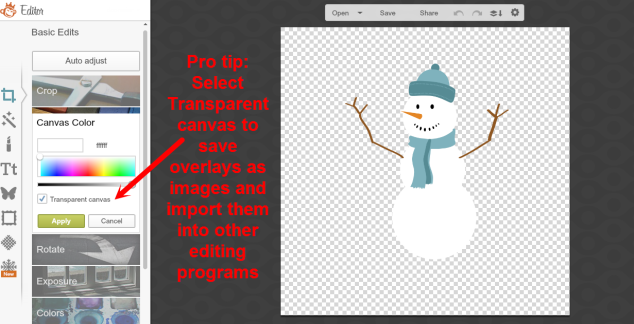 PicMonkey Create Image With Transparent Background